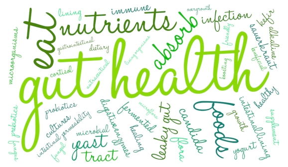 bigstock-Gut-Health-Word-Cloud-93732419